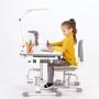 Комплект парта и стул с чехлом серый Rifforma Set-10